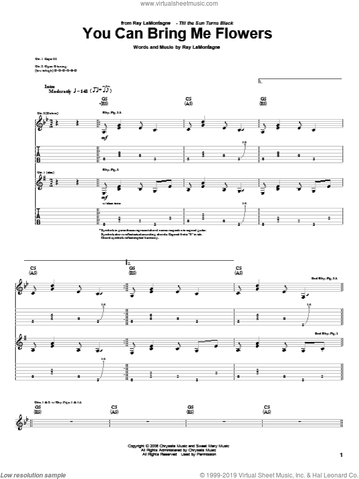 You Can Bring Me Flowers sheet music for guitar (tablature) by Ray LaMontagne, intermediate skill level