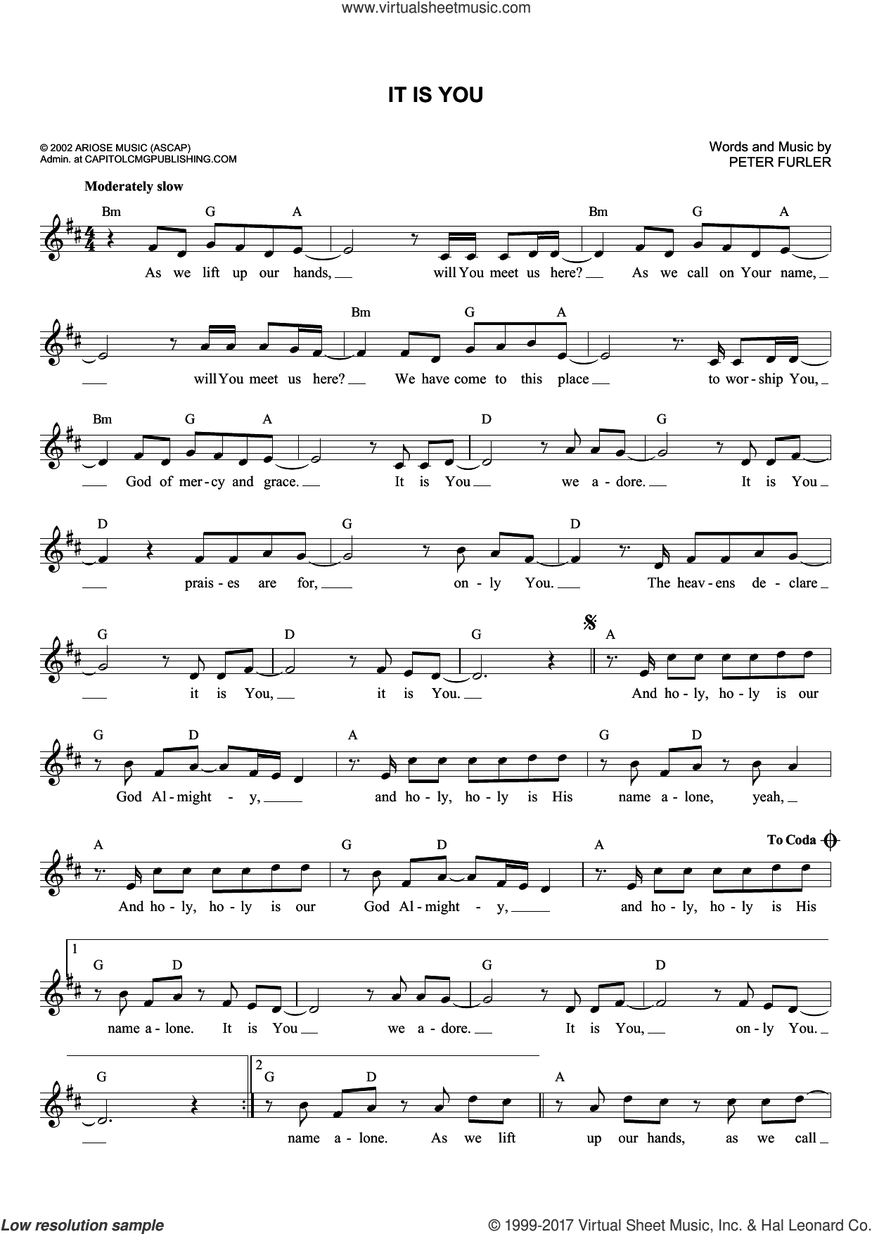 It Is You sheet music for voice and other instruments (fake book) by Newsboys and Peter Furler. Score Image Preview.