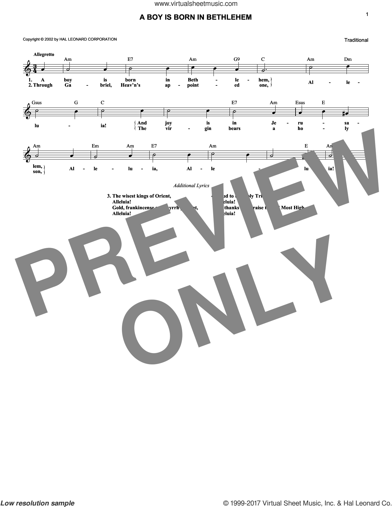 A Boy Is Born In Bethlehem sheet music for voice and other instruments (fake book). Score Image Preview.
