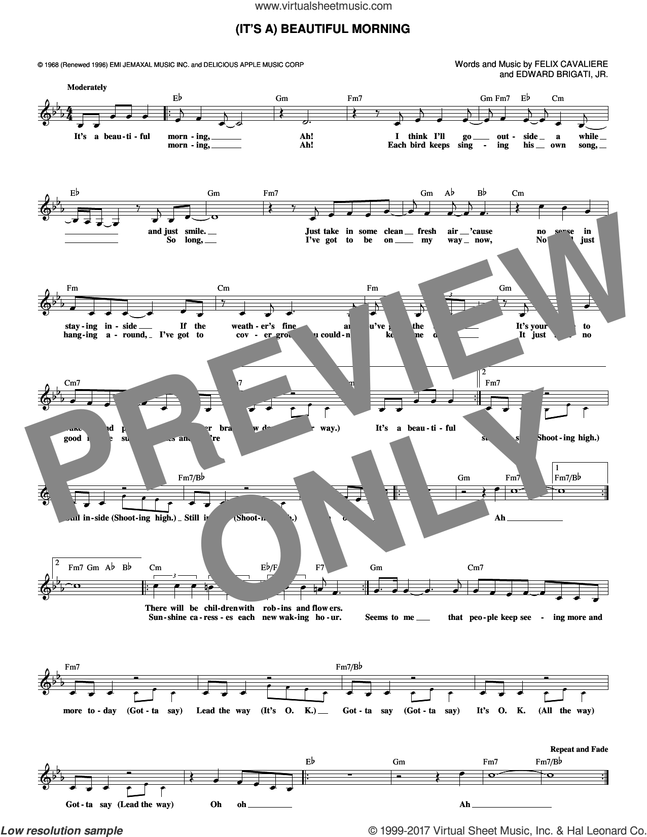 (It's A) Beautiful Morning sheet music for voice and other instruments (fake book) by The Rascals, Edward Brigati, Jr. and Felix Cavaliere, intermediate skill level