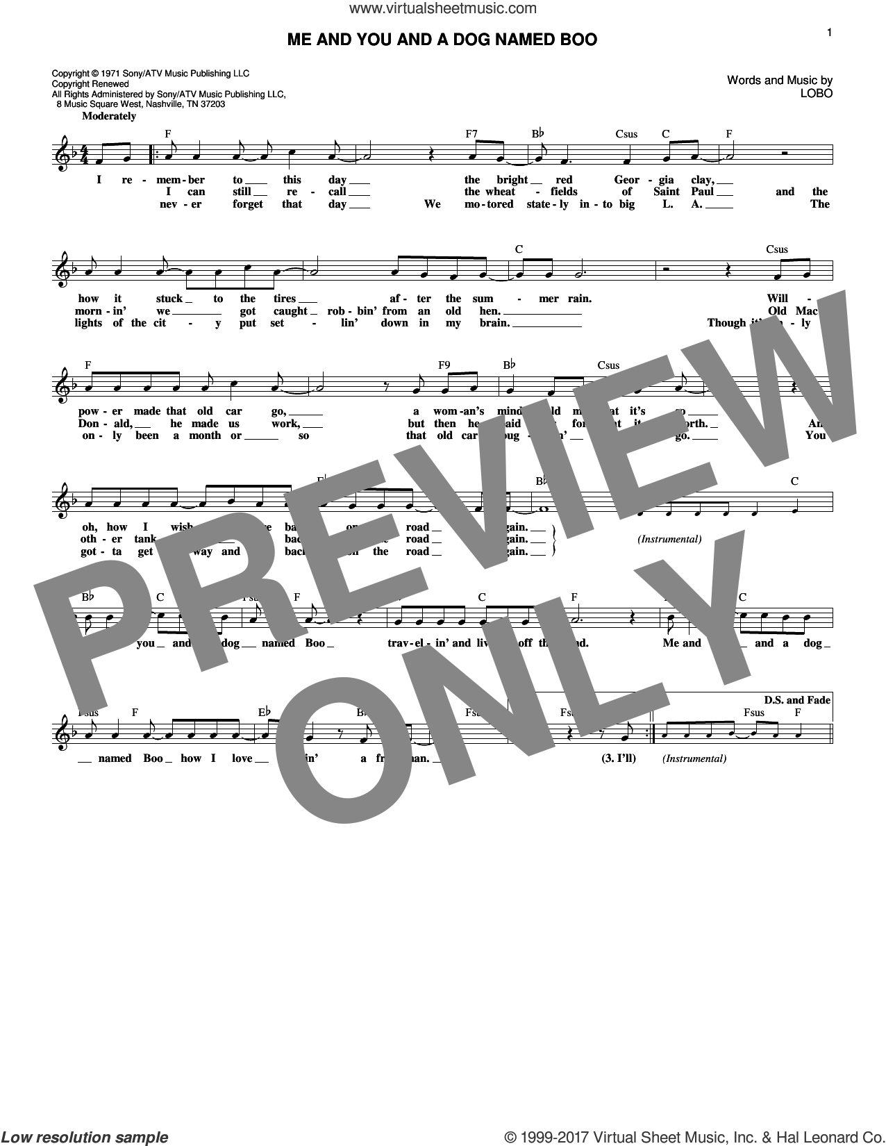 Me And You And A Dog Named Boo sheet music for voice and other instruments (fake book) by Lobo, intermediate. Score Image Preview.