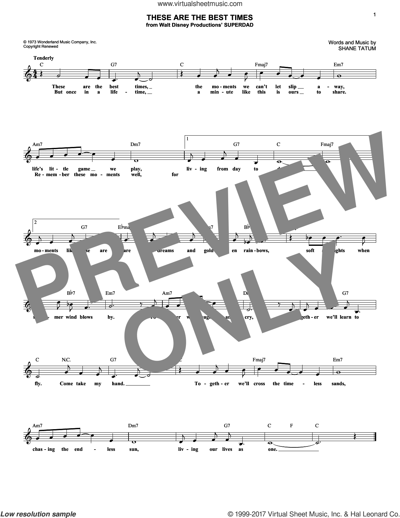 These Are The Best Times sheet music for voice and other instruments (fake book) by Shane Tatum, intermediate voice. Score Image Preview.