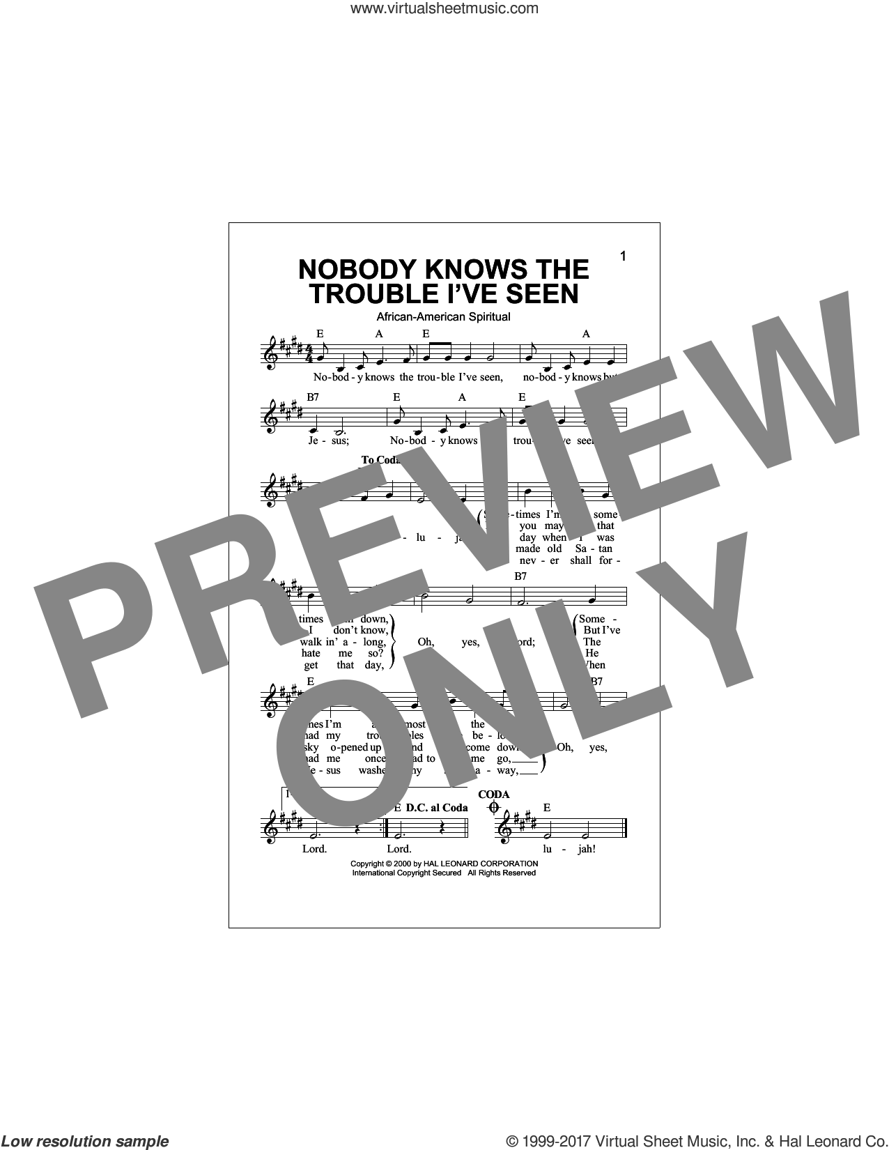 Nobody Knows The Trouble I've Seen sheet music for voice and other instruments (fake book), intermediate. Score Image Preview.