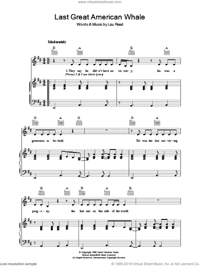 Last Great American Whale sheet music for voice, piano or guitar by Lou Reed, intermediate skill level
