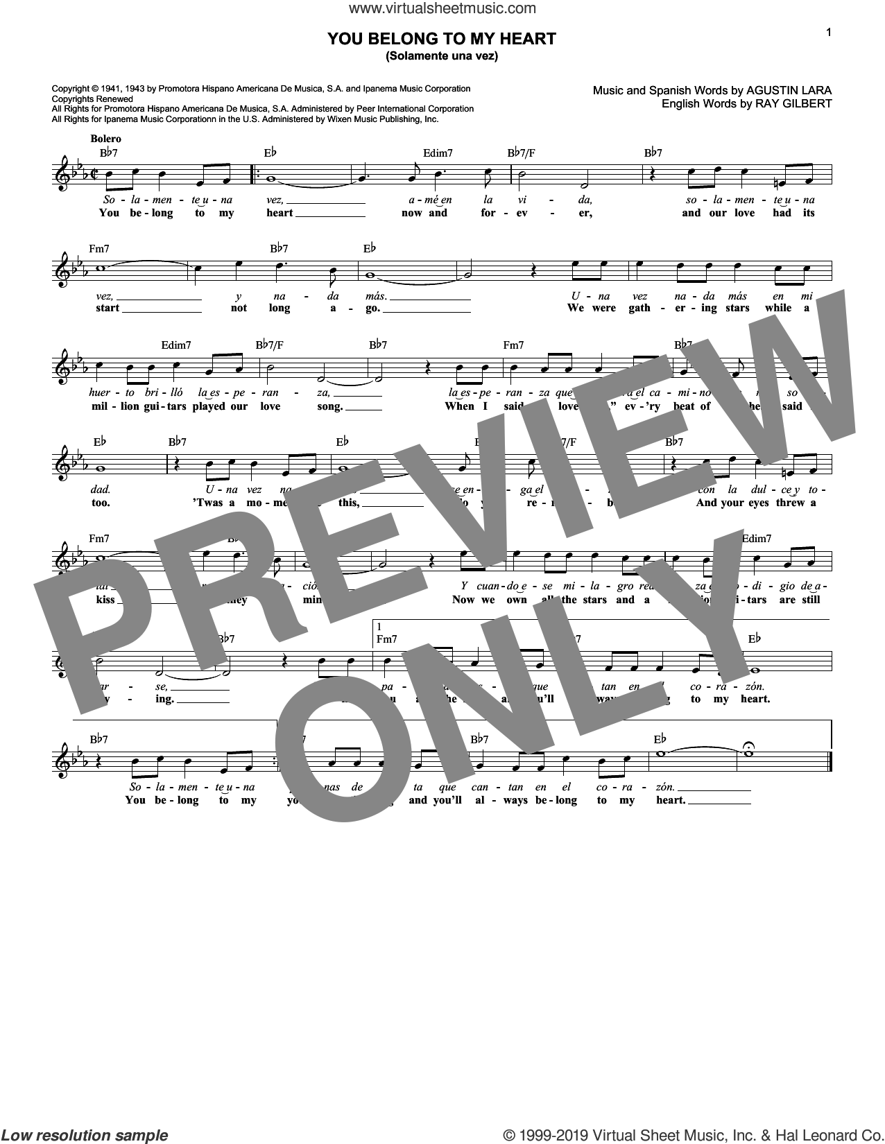 You Belong To My Heart (Solamente Una Vez) sheet music for voice and other instruments (fake book) by Agustin Lara and Ray Gilbert, intermediate skill level