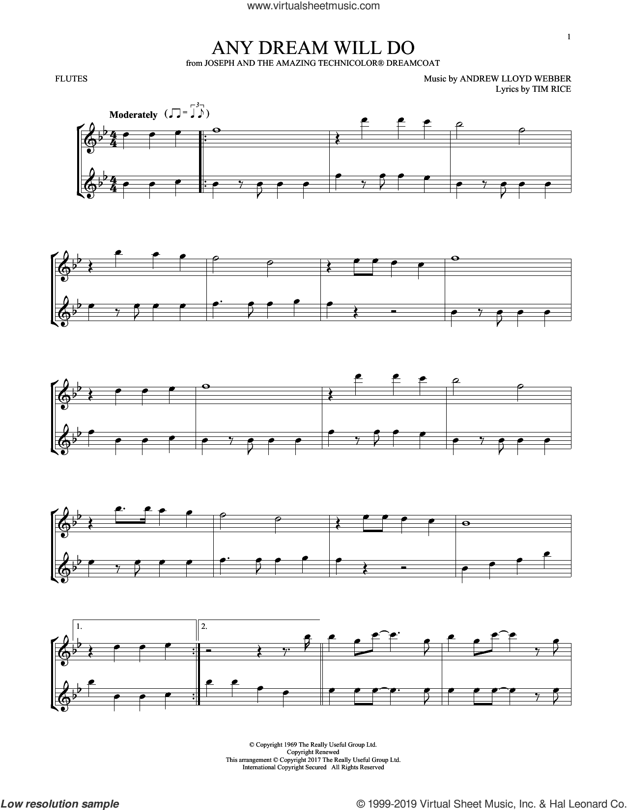Any Dream Will Do (from Joseph And The Amazing Technicolor Dreamcoat) sheet music for two flutes (duets) by Andrew Lloyd Webber and Tim Rice, intermediate skill level