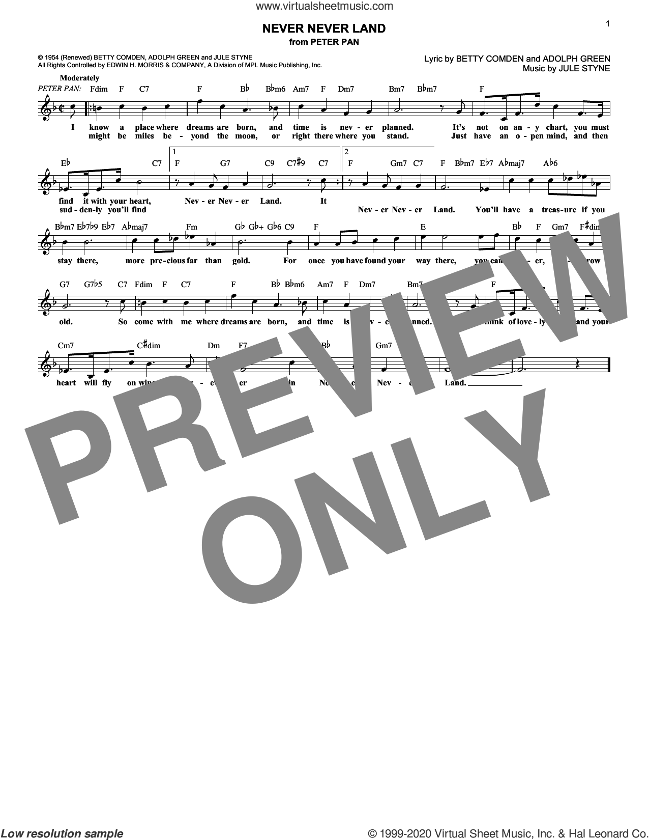 Never Never Land (from Peter Pan) sheet music for voice and other instruments (fake book) by Adolph Green, Betty Comden and Jule Styne, intermediate skill level