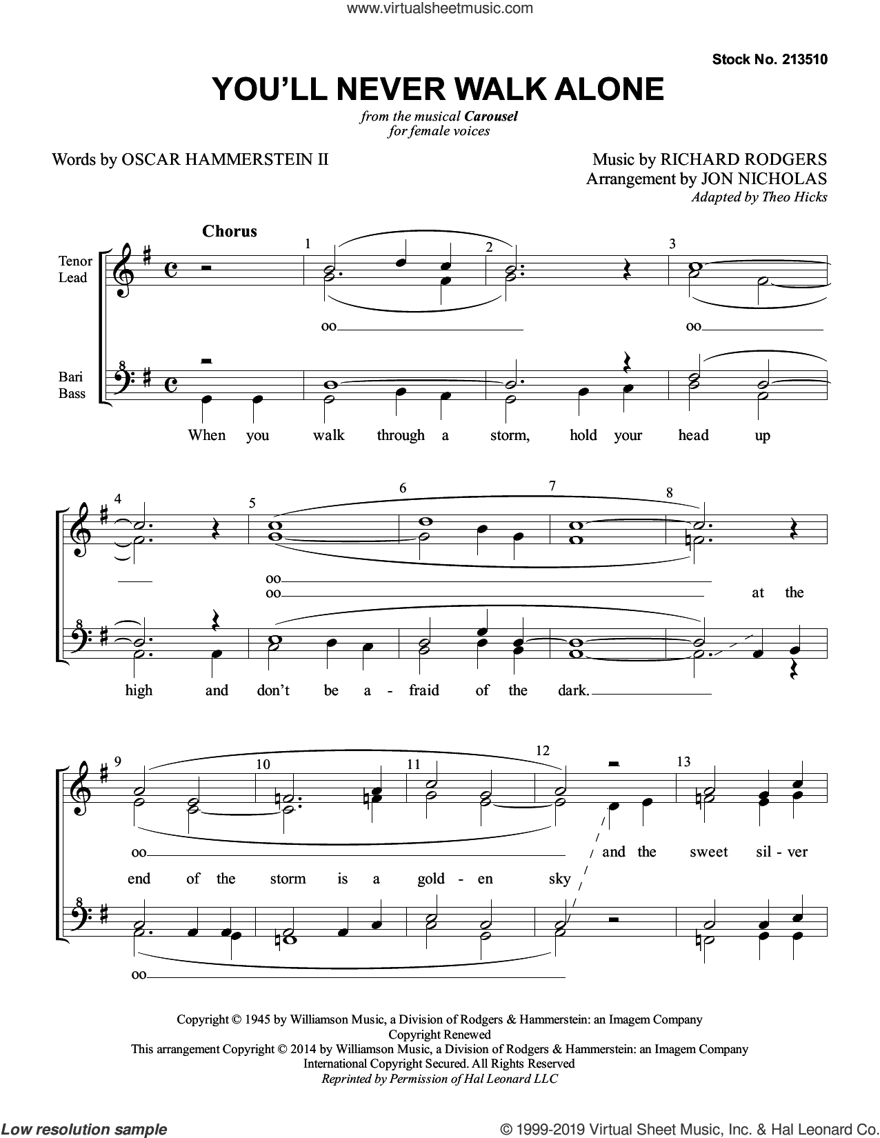 You'll Never Walk Alone (from Carousel) (arr. Jon Nicholas) sheet music for choir (SSAA: soprano, alto) by Rodgers & Hammerstein and Jon Nicholas, intermediate skill level