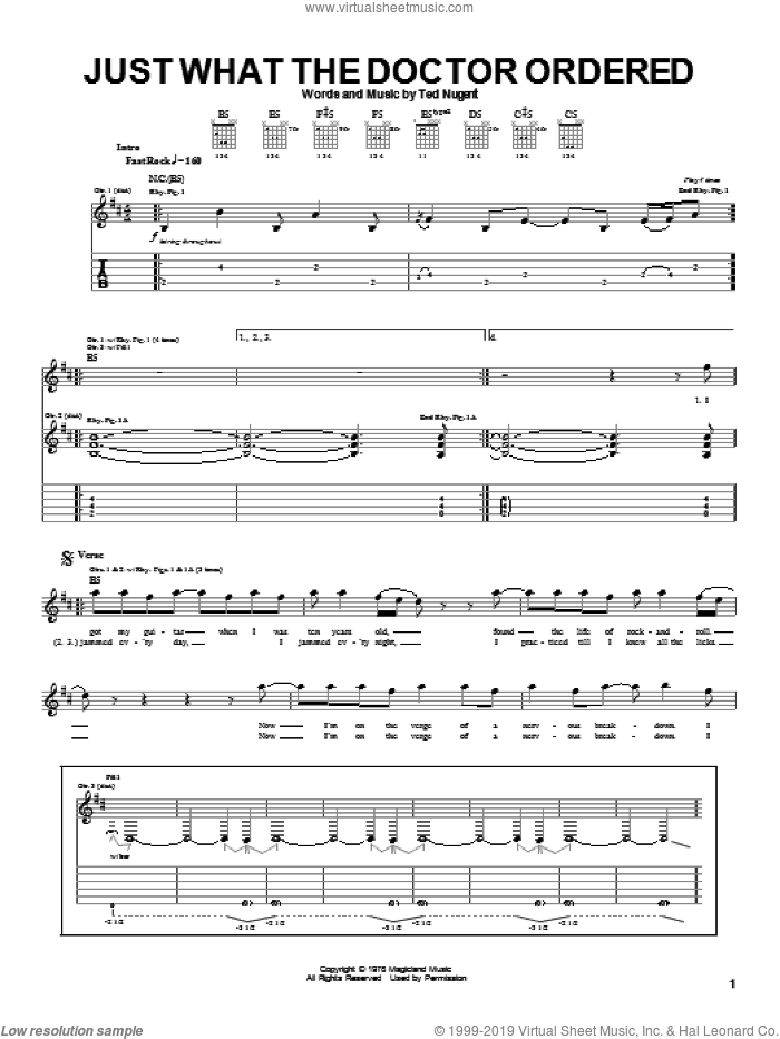 Just What The Doctor Ordered sheet music for guitar (tablature) by Ted Nugent, intermediate skill level