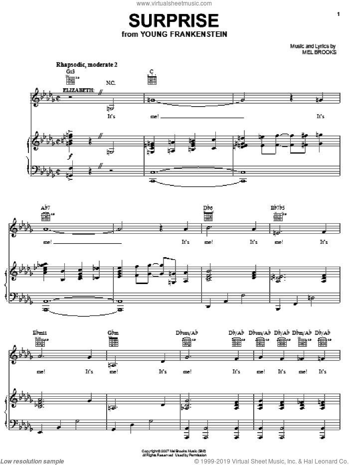 Surprise sheet music for voice, piano or guitar by Thomas Meehan