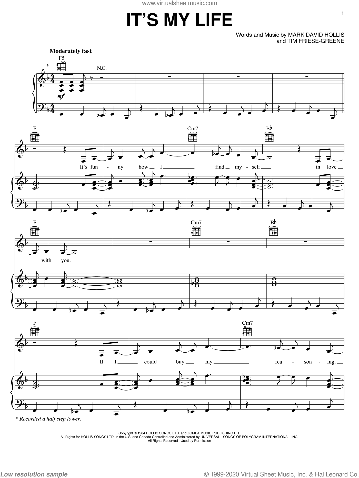 It's My Life sheet music for voice, piano or guitar by Talk Talk, No Doubt, Mark Hollis and Tim Friese-Greene, intermediate skill level
