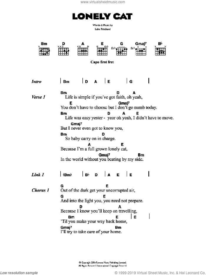Lonely Cat sheet music for guitar (chords) by The Kooks, intermediate. Score Image Preview.