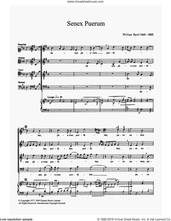 Cover icon of Senex Puerum sheet music for choir by William Byrd, classical score, intermediate skill level