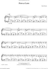 Cover icon of Penn Ar Lann sheet music for piano solo by Yann Tiersen, classical score, intermediate skill level