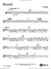 Cover icon of Beyond sheet music for voice and other instruments (fake book) by Dan Nichols, intermediate skill level